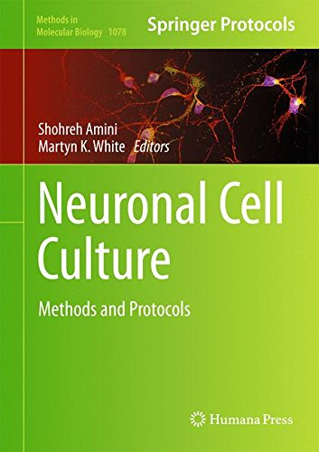 Neuronal Cell Culture: Methods and Protocols (Methods in Molecular Biology)