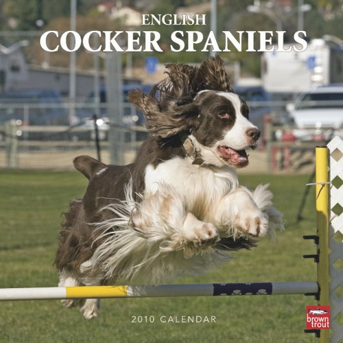 (English Cocker Spaniels 2010 Square Wall )