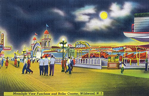 Wildwood-by-the-Sea, New Jersey - Funchase and Roller Coaster in the Moonlight 31905 (12x18 SIGNED Print Master Art Print - Wall Decor Poster)