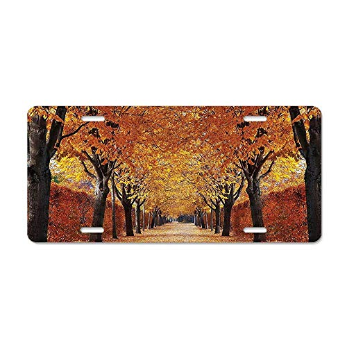 (Get Noy Nature Fall Road in Park Autumn Leaves License Plate Cover Aluminum Car Tag Cover License Tag Holder License Plate Frame for US Vehicles Standard)