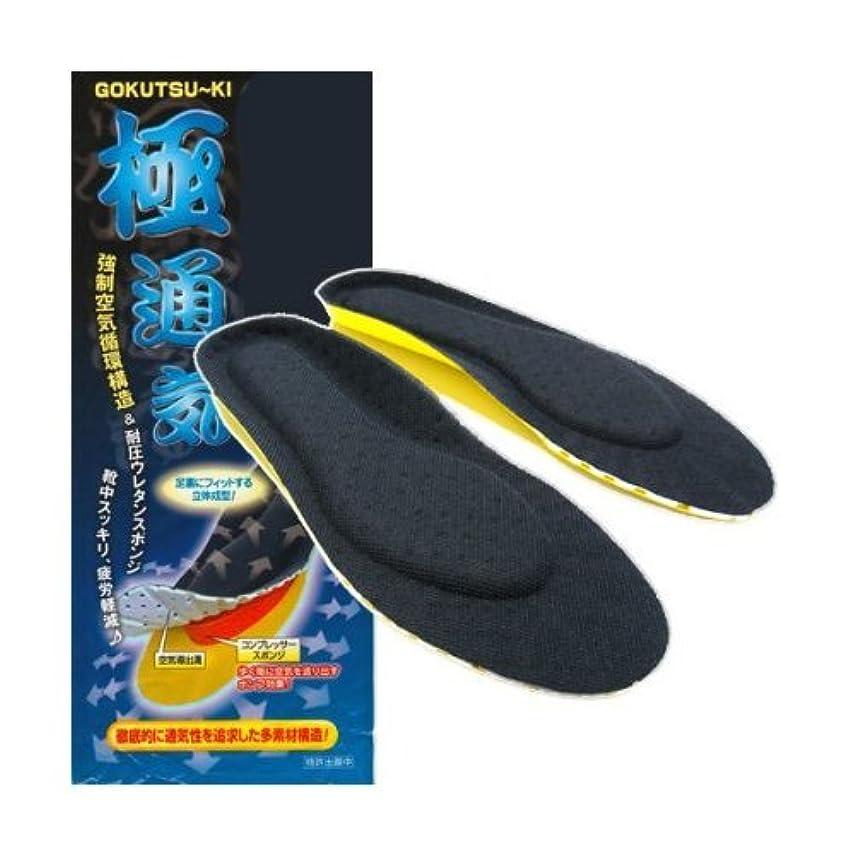 破壊頭痛直面するis-fit 働く男 スーパー極通気インソール L 26.0~27.0cm 1ソクグミ