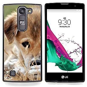 """Mestizo del perrito del perro de Brown Hierba Blanca"""" - Metal de aluminio y de plástico duro Caja del teléfono - Negro - LG Magna / G4C / H525N H522Y H520N H502F H500F (G4 MINI,NOT FOR LG G4)"""