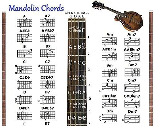 Compare Price Mandolin Chord Chart Poster  On StatementsltdCom