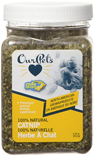 OurPets Premium North-American Grown Catnip, 1-1/4-Ounce Jar