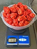 #1: Fresh Carolina Reaper Hot Peppers by the Pound