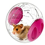 Emours Dwarf Hamster Mini Run-About 4.8 inch Small Animal Exercise Ball (pink)