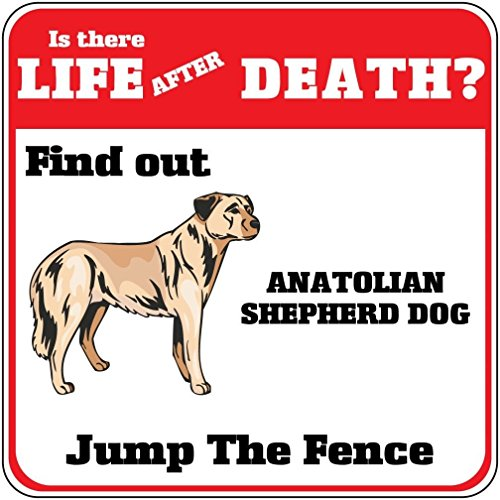 Anatolian Shepherd Dog Dog Life After Death? Jump Fence Crossing SignVinyl Sticker Decal 8
