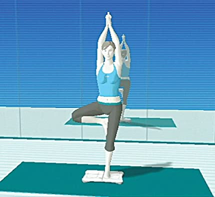 Amazon.com: Wii Fit Game with Balance Board: Jeff Corwin ...
