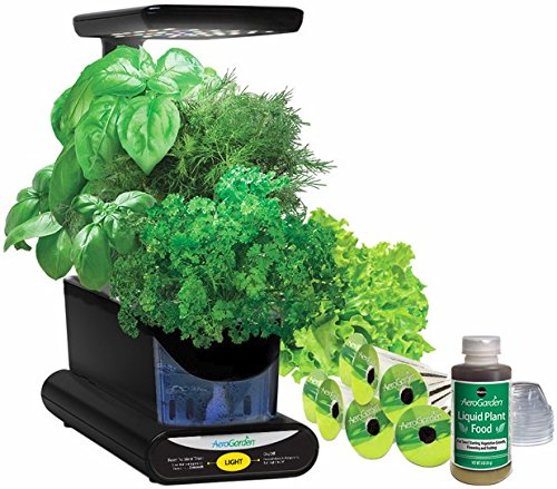 Miracle-Gro Aerogarden Sprout Led - Black by Miracle-Gro