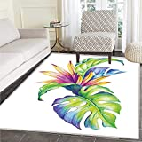 color schemes for bedrooms Plant Area Rug Tropical Leaves and Monstera with Abstract Color Scheme Hawaiian Floral Elements Floor Mat Rug Indoor/Front Door/Kitchen and Living Room/Bedroom Mats Rubber Carpe Non Slip