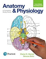 Anatomy and Physiology Coloring Workbook: A Complete Study Guide, 12th Edition