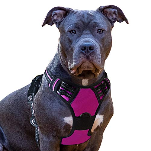 Eagloo Dog Harness No Pull, Walking Pet Harness with 2 Metal Rings and Handle Adjustable Reflective Breathable Oxford Soft Vest Easy Control Front Clip Harness Outdoor for Large Dogs Rose Red