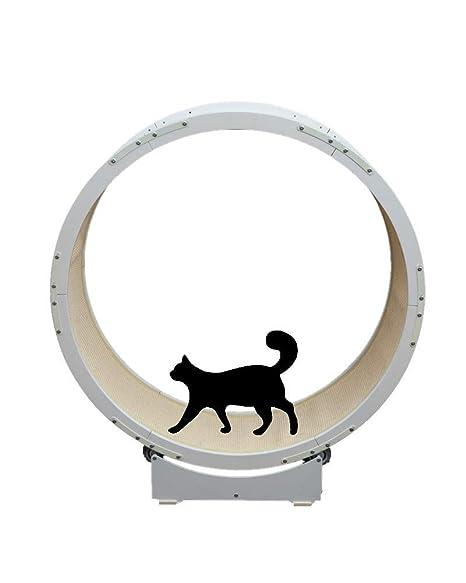 DAYUMAOJIN Árbol de Gato Grande 1.2m de diámetro Cinta de Correr ...