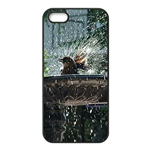 The birds in the water Cell Phone Case for iPhone 5c