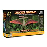Pterodactyl Action Figure – Includes Real Dinosaur Bone Fossil!
