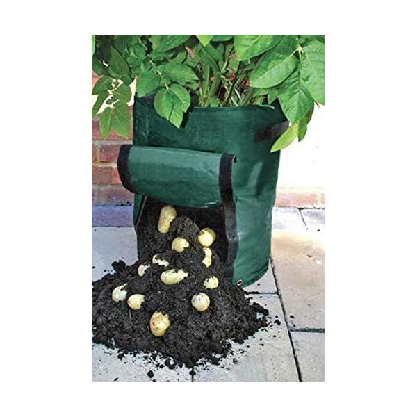 Borsa per piante Woven patate coltivazione di impianto Borse Orto Growing Borse Vasi Fioriere giardino della casa Farm… 3 spesavip