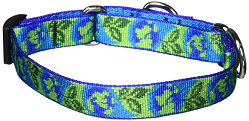 LupinePet 3/4-Inch Earth Day 10-14-Inch Martingale Combo Collar for Small to Medium Dogs