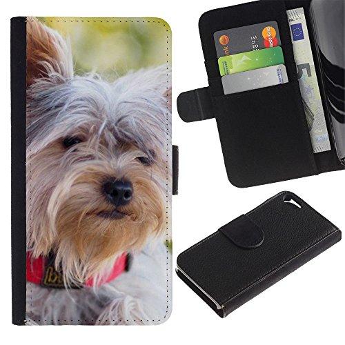 Be Good Phone Accessory // Flip Étui de Protection Cuir Portefeuille Housse Fente Carte Coque pour Apple Iphone 5 / 5S // Schnauzer Norfolk Terrier Havanese