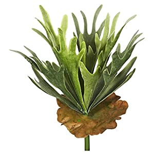 Faux Staghorn Fern Bush Frosted Green Foliage 68
