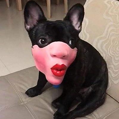 AOLVO Mascarilla de Cara de Perro Mascarilla de Boca para Mascotas ...