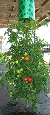 amazoncom felknor ventures topsy turvy upsidedown tomato planter garden u0026 outdoor