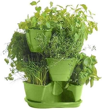 Prosperplast Blumentopf Kr/äutertopf 29cm Olivgr/ün mit Wasserspeicher Blumenampel Kr/äuterampel Kr/äutergarten