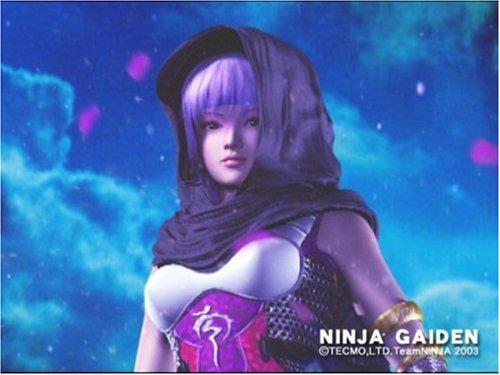Amazon.com: Ninja Gaiden Occasion [ Xbox ]: Video Games