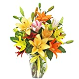 Assorted Lilies by Ashland Addison - Mother's Day - Fresh Flowers Hand Delivered - Chicago Area