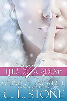 Sound Snowfall Ghost Winter Academy ebook product image