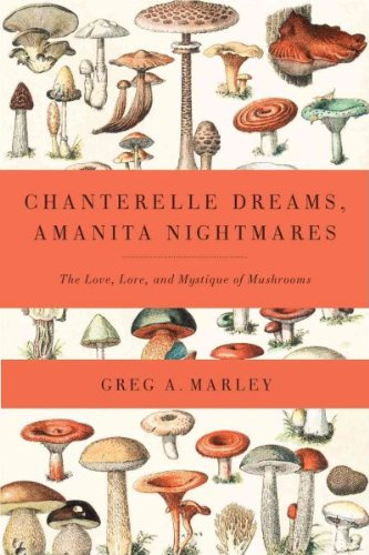 Chanterelle Dreams Amanita Nightmares The Love Lore And Mystique Of Mushrooms Chanterelle Dreams Amanita Nightmares Mystique Mushroom