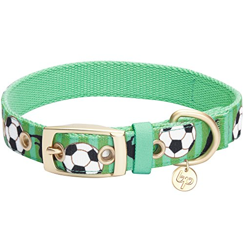 Blueberry Pet 5 Patterns Durable Sports Fan Soccer Canvas Dog Collar with Metal Buckle in Spring Green, Neck 17-20.5