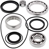 All Balls 25-2033 Rear Differential Bearing and Seal Kit