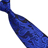 Changeshopping New Silk Classic Paisley Mix Color JACQUARD WOVEN Mens Tie Necktie (Royal Blue)