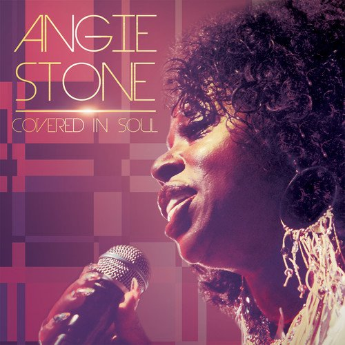 Covered in Soul (Best Of Angie Stone)