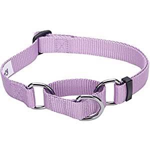 Blueberry Pet 19 Colors Safety Training Martingale Dog Collar, Lavender, Large, Heavy Duty Nylon Adjustable Collars for Dogs