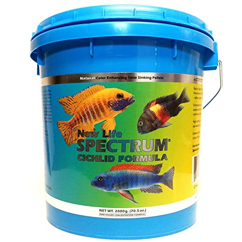 - New Life Spectrum Cichlid Formula Sinking 1mm Pellets 2000 Gram Bucket - with 1/4-lb California Blackworm & Ultra Intense Coloring Mixed Size Pellets Included