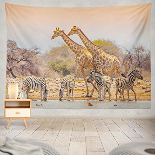 ASOCO Tapestry Wall Handing Two Giraffes and Four Zebras in Etosha National Park Namibia Wall Tapestry for Bedroom Living Room Tablecloth Dorm 60X80 Inches ()