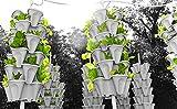 5-Tier Strawberry and Herb Garden Planter