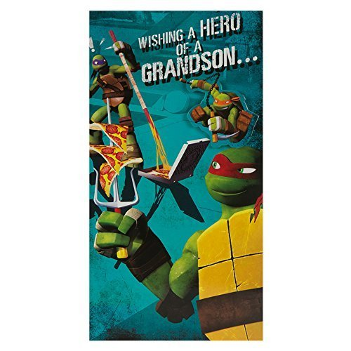 Hallmark Medium Slim Grandson Kids Ninja Turtles Badge Birthday Card -