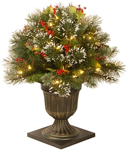National Tree 26 Inch Wintry Pine Porch Bush with Red Berries, Cones and 50 Clear Lights in Decorative Urn (WP1-300-24P) (Berry Topiary Red)