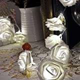 20 LED Rose Flower Fairy Wedding Garden Party Christmas Decor Xmas String Lights, White color.