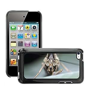 GoGoMobile Etui Housse Coque de Protection Cover Rigide pour//M00124046 Mariposa insecto Macro//Apple ipod Touch 4 4G 4th