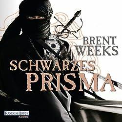 Schwarzes Prisma (Die Licht-Saga 1)