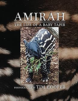 Amirah: The Life of a Baby Tapir by [Cooper, Tim]