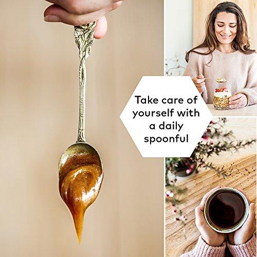 Comvita Certified UMF 10+ (MGO 263+) Raw Manuka Honey, Non-GMO Superfood, 17.6 oz
