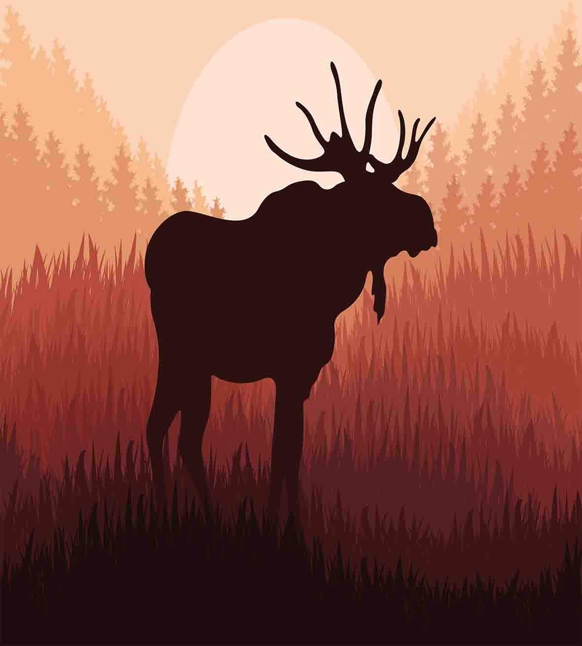 Duvet Cover Set Moose Antlers in Wild Alaska Forest Rusty Abstract Landscape Design Deer Theme Woods Ultra Soft Breathable Durable Twill Plush 4 Pcs Bedding Sets for Kids/Teens/Adults Twin Size by BABE MAPS (Image #2)