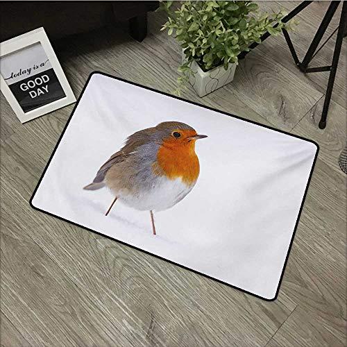 Moses Whitehead Carpets Floor Door Mat Bird,Cute European Robin Standing in Snow Songbird Beak and Feathers Winter Season,Tan Orange White,for Indoor Outdoor Easy Clean Entry Way,30