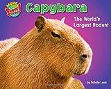 Capybara, Natalie Lunis, 1936087316