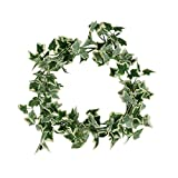 Colorfulife Artificial High-grade 3.3-Ft Ivy Leaf Vine Leaves Hanging Flowers Garland Plant Rattan Home Garden Wedding Party Wall Decoration (Ivy Leaves with White Edge)