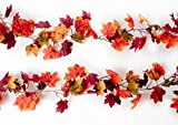 CraftMore Set of 2 Autumn 6 Foot Garland